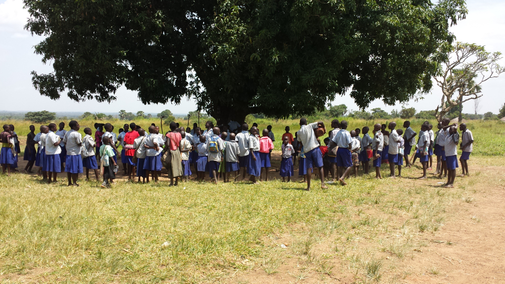 Students at Tochi Primary School gathering under a tree during recess