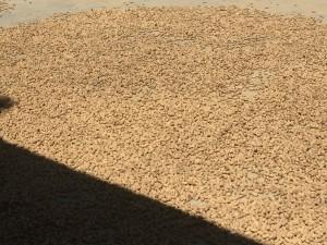 A sample of the products of Ngo Gia Hue's peanut farm.